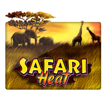 Play Safari Heat free slot machine online